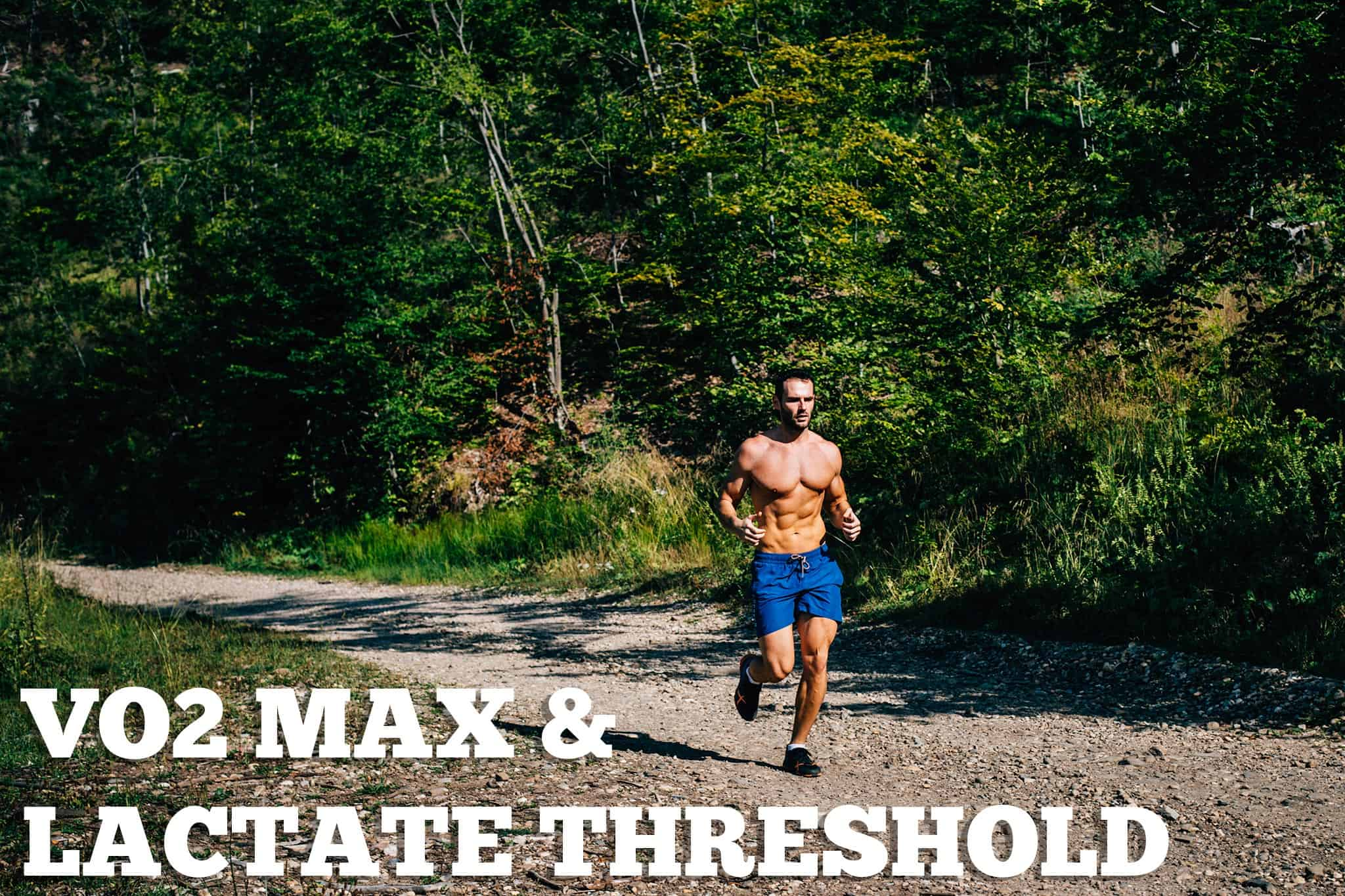 VO2 max and lactate threshold